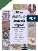 Album Didatico de Anatomia Vegetal