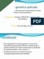 Presentacion final sobre tipos de selecciones para el mejoramiento genética%28APPOLON Pauléus%29