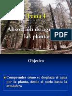 Tema 4. Absorcion y Transporte de Agua en La Planta