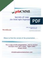 The Secrets of Cmmi for Small Companies Webinar Speaker Slides1