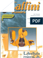 Catalog Caffini Pumps en FR IT