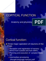 Higher Cortical Function 2006
