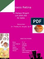 Ablasio Retina PPT revisi.ppt