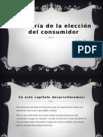 TEORIA DEL CONSUMIDOR.pptx