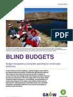 Blind Budgets