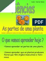 Plantas Partes