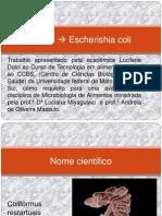apresentação e coli