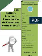 Proyecto Esparrago Falta 111
