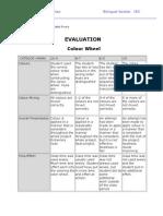 Evaluation Colour Wheel