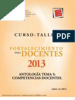 Tema 5 Antologia 2013