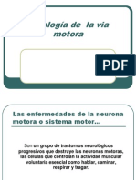 Enfermedades de La via Motora Presentacion 2