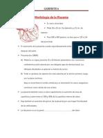 5 GABINETE.pdf