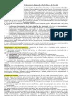 Constitucional 2 Teoria Carlos Blaco de Morais[1]