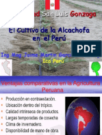 elcultivodelaalcachofaenelperu-100117065012-phpapp01