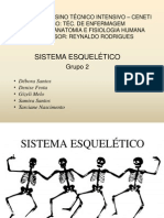 Sistema Esquelético slide
