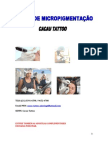 Apostila - Micropgmentação (Maquiagem Definitiva)