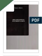 Organizational Psychodynamics (ENG)