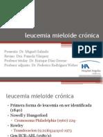 20110712_lmc1