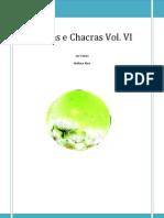 Pedras e Chacras Vol. 6