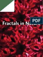 revista fractales