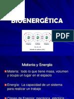 07 Bionergética