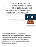 Prevalencia de Mastitis en Vacas Lecheras de Primer