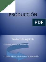 Produccion Agricola y Minera