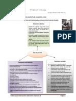PRINCIPIOS ELEMENTALES DEL MEDIO JUEGO _3° parte-tipos de posición(sinopsis)