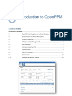 Introduction to Openppm