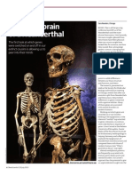 First look into workings of the Neanderthal brain