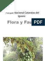 Parque Nacional Cataratas del Iguazú
