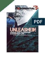 Unleashed PDF V4