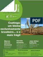 Caatinga, Um Bioma Exclusivamente Brasileiro
