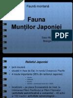 Fauna Muntilor Japoniei