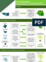 Infographies - Décentralisation.pdf