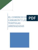 Caso Del Camaron