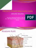 Presentasi BPwound Healing-prof Bambang