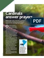 PFK Cardinal_piaba Aug 2013