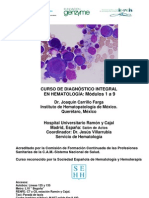 Programa Curso Diagn-Stico Integral en Hematolog-A