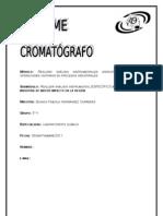 Informe Del Cromatografo de Gases