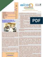 Boletín AsíCEA abril 2009