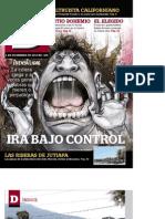 revista D.pdf