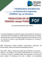 PUNGARAYACU PRESENTACION