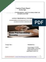NPA Final Report