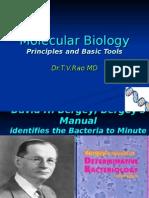 Allison biology pdf molecular fundamental