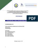 Guía Metodológica Litigación Oral