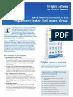 Datasheet Multichannel Accelerator B2B En