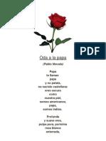 Oda a La Papa Pablo Neruda