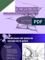 TAMAÑO DE LA PELVIS Y SU CALCULO CLINICO.pptx