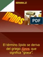 lipidos1